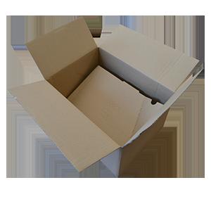 TigerSpeed-Box 1